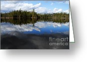 Larry Ricker Greeting Cards - Calm Before the Storm Greeting Card by Larry Ricker