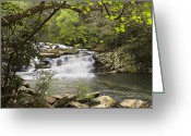 Fall Scenes Greeting Cards - Cascades at Coker Creek Greeting Card by Debra and Dave Vanderlaan