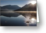 Glacier Greeting Cards - Celebrate Greeting Card by Scott Hansen
