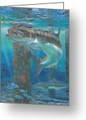 Miami Painting Greeting Cards - Cobia Strike Greeting Card by Carey Chen