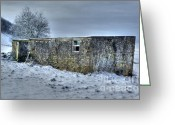 David Birchall Greeting Cards - Cold Comfort  Greeting Card by David Birchall