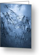 Reflections In Water Greeting Cards - Cold reflection Greeting Card by Gary Heller