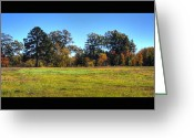 Fall Photographs Greeting Cards - Colorful Field Photograph With Black Border Greeting Card by Ester  Rogers