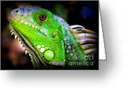 Iguana Greeting Cards - Come A Little Closer Greeting Card by Karen Wiles