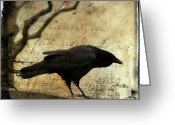 Bird Framed Prints Greeting Cards - Curious Crow Greeting Card by Gothicolors With Crows