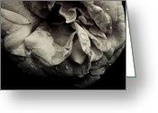 Grebo Gray Greeting Cards - Dark Flower 13 Greeting Card by Grebo Gray