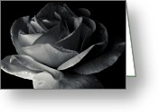 Grebo Gray Greeting Cards - Dark Flower 17 Greeting Card by Grebo Gray