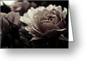 Grebo Gray Greeting Cards - Dark Flower 20 Greeting Card by Grebo Gray