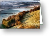 Simon Bratt Photography Greeting Cards - Dawn breaking over wrinkled hill Greeting Card by Simon Bratt Photography