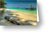 Fishing Boat Greeting Cards - Driftwood Greeting Card by Adrian Evans