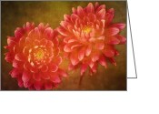 Garden Pyrography Greeting Cards - Dual Dahlias Greeting Card by Keith Gondron