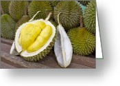 Durian Greeting Cards - Durian 2 Greeting Card by David Gn
