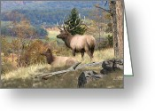 Elk Greeting Cards - Elk Art - Return of the Mighty Elk - Fine Art Elk Painting Greeting Card by Elk Artist Dale Kunkel