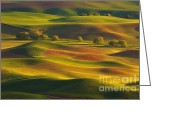 Wheatfields Photo Greeting Cards - Evening Calm Greeting Card by Reflective Moments  Photography and Digital Art Images