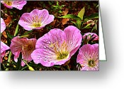 Julie Dant Greeting Cards - Evening Primroses Greeting Card by Julie Dant
