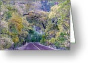 Panoramique Greeting Cards - Fall Colors of Zion Greeting Card by Rachel Gagne