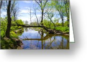 Bill Cannon Greeting Cards - Fallen Tree over Marsh Creek Greeting Card by Bill Cannon