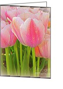Caputo Greeting Cards - Fantasy in Pink - Tulips Greeting Card by Dora Sofia Caputo
