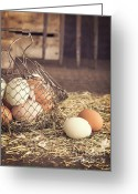 Lay Greeting Cards - Farm Fresh Eggs Greeting Card by Edward Fielding