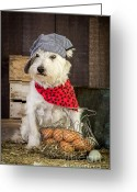 Westie Greeting Cards - Farmer Dog Greeting Card by Edward Fielding