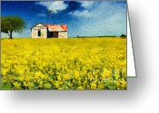 Rapeseed Greeting Cards - Field of Dreams Greeting Card by Betty LaRue