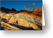 Desert Southwest Greeting Cards - Fire Lines Greeting Card by Chad Dutson