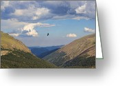 Rocky Mountain National Park Greeting Cards Greeting Cards - Flying the valley Greeting Card by Jon Burch Photography