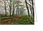 Skyway Greeting Cards - Foggy Morning on the Cherohala Skyway in North Carolina I Greeting Card by Dan Carmichael