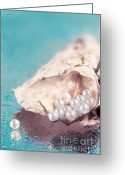Seashell Art Greeting Cards - Fresh Greeting Card by Viaina