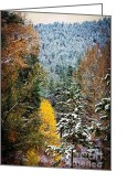 Rocky Mountains Greeting Cards Greeting Cards - Frosting on the Pines Greeting Card by Jon Burch Photography