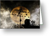 Bill Cannon Greeting Cards - Full Moon Roost Greeting Card by Bill Cannon