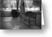Ann Powell Greeting Cards - Garden Bench black and white photograph Greeting Card by Ann Powell