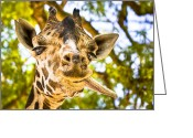 Goofy Greeting Cards - Giraffe Gives a Raspberry Greeting Card by Mark E Tisdale