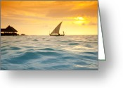 Sean Davey Greeting Cards - Golden Dhoni Sunset Greeting Card by Sean Davey