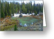 National Mixed Media Greeting Cards - Goose Creek - Beaver Dam Construction Greeting Card by Photography Moments - Sandi