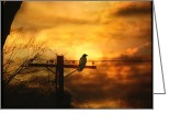 Telephone Pole Greeting Cards - Gothic Sunset Greeting Card by Gothicolors With Crows