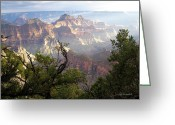 Judy Greeting Cards - Grand Canyon  Greeting Card by Iconic Images Art Gallery David Pucciarelli