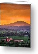 Mountain Vineyards Greeting Cards - Groth Sunset_Vert Greeting Card by Mars Lasar