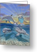 Miami Dolphins Greeting Cards - Happy Hour Greeting Card by Carey Chen