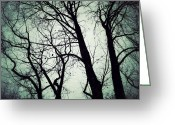 Winter Trees Digital Art Greeting Cards - Haunted Greeting Card by Natasha Marco