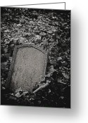 Odd Jeppesen Greeting Cards - Here Lies... Greeting Card by Odd Jeppesen