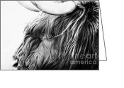 Lamb Greeting Cards - Highland Cow Mono Greeting Card by John Farnan