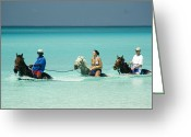 Surf Lifestyle Greeting Cards - Horse Riders in the Surf Greeting Card by David Smith