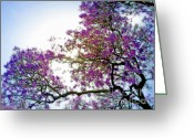 Gwyn Newcombe Greeting Cards - Jacaranda Glory Greeting Card by Gwyn Newcombe