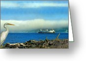 Kitsap Peninsula Greeting Cards - Kingston Sentinel Greeting Card by Mike Flynn