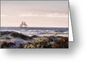 Lipton Greeting Cards - Lady Washington in Morro Bay Greeting Card by Aprille Lipton