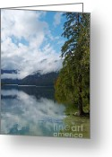 Lake Bohinj Greeting Cards - Lake Bohinj Colours Greeting Card by Phil Banks