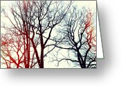 Winter Trees Digital Art Greeting Cards - LHiver Greeting Card by Natasha Marco