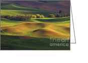 Wheatfields Photo Greeting Cards - Light Play Greeting Card by Reflective Moments  Photography and Digital Art Images