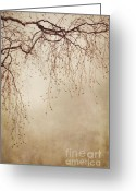 Twig Greeting Cards - Listen Closely  Greeting Card by Priska Wettstein